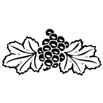 Vector de Uva