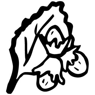 Vector de Varias