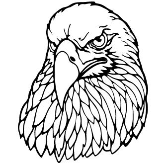 Vectores de Aguilas