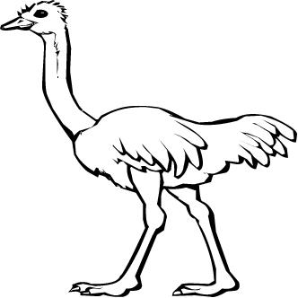 Vectores de Avestruz