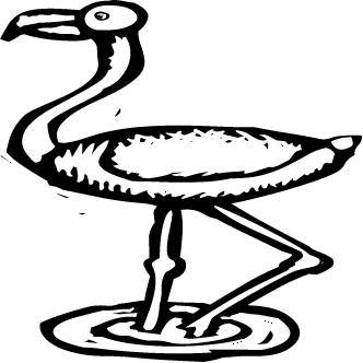 Vector de Avestruz