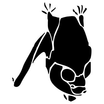 Vector de Murcielago