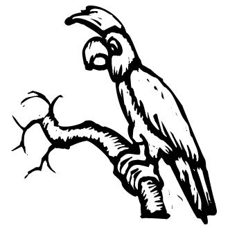 Vector de Tucan