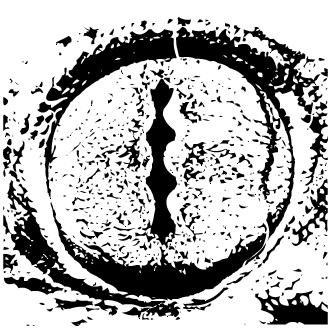 Vectores de Ojos De Animales