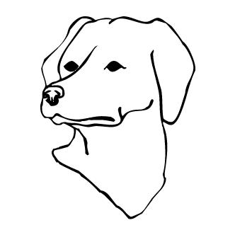 Vectores de Cabeza De Perro