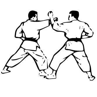 Vectores de Karate