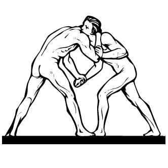 Vector de Lucha