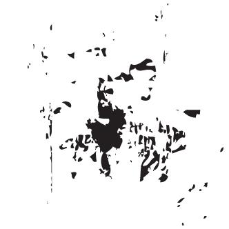 Vector de Difuzas