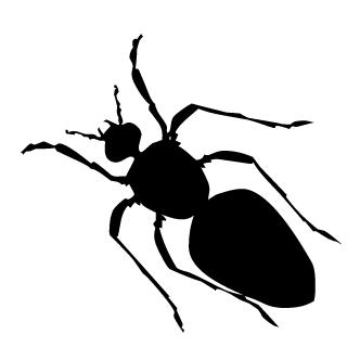 Vector de Hormigas