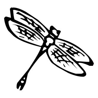Vector de Matapiojo