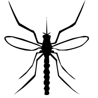 Vectores de Mosquito