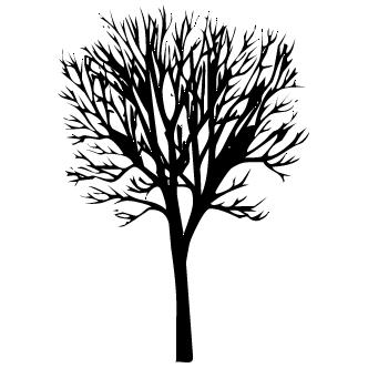 Vectores de arbol sin hojas todo vector for Arboles de hoja perenne sin fruto