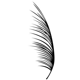 Vector de Palmera Hojas