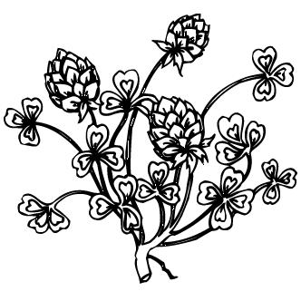 Vectores de Flores Abstractas Compuestas