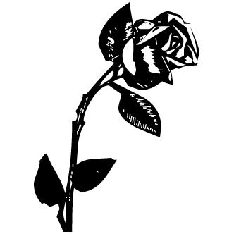 Vectores de Rosa Sola