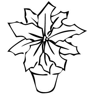 Vector de Muerdago